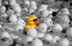 stand out from crowd